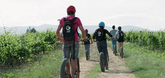 Trotti Bike dans les Vignes, Dégustation et Apéro Dinatoire